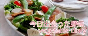 野菜ブログ